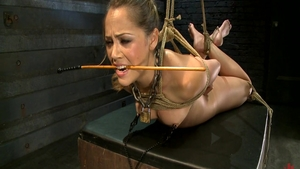 Pornstar Kristina Rose gets a buzz out of bondage in HD